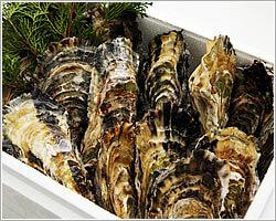 殻付き渡利牡蠣